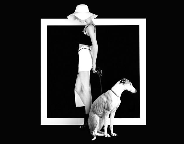 Black-and-white season from Bershka